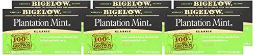 Bigelow Plantation Mint Tea, 20-Count Boxes (Pack of 24) by Bigelow Tea (Image #6)