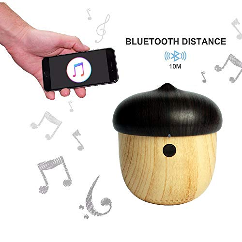 FLABEY Portable Bluetooth Speaker, Wireless Mini Bluetooth Music Player, with Enhanced Bass and Built-in Mic, Bluetooth Speaker for Home Outdoor Travel, 10m Wireless Range up to 8 Hours Playtime