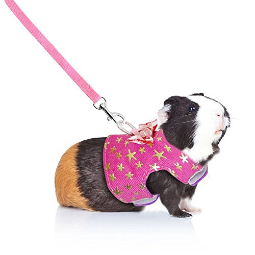 Pictures of Stock Show Small Pet Outdoor Walking Harness 3