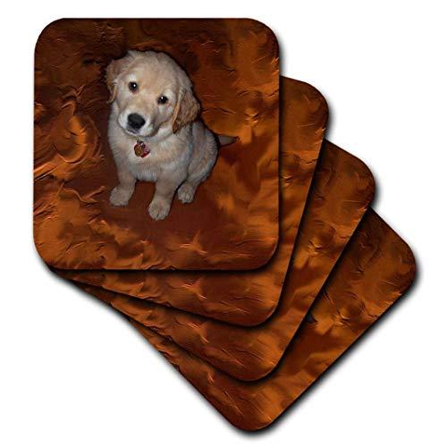 3dRose cst_3970_2 Golden Retriever Puppy-Soft Coasters, Set of 8 ()