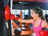 Punching Bag Hanging Boxing Ball,Speed Punch Bag