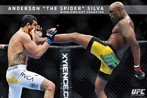 Pyramid America UFC-Anderson Silva Standard Poster Print, 24 by 36-Inch