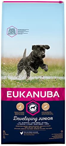 Eukanuba Junior Dog Food For Large Dogs Rich In Fresh Chicken For the Optimal Body Condition of Your Dog, 12 kg – Dogs Corner