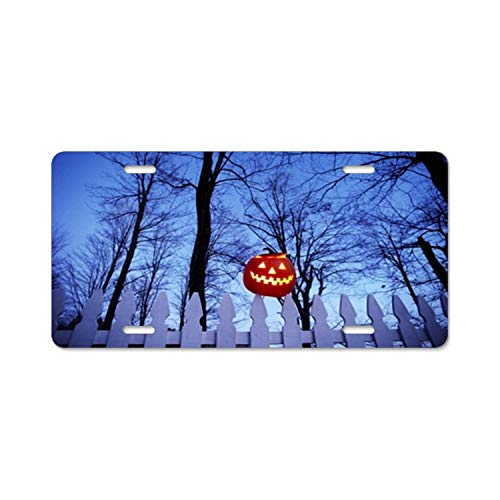 Jingailicenseco Picket Fence Pumpkin Lantern License Plate Cover Aluminum License Plate Cover Heavy Duty USA Car Tag 4 Hole and Screws