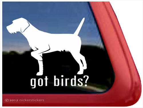 Got Birds? ~ German Wirehaired Pointer Vinyl Window Auto Decal Sticker