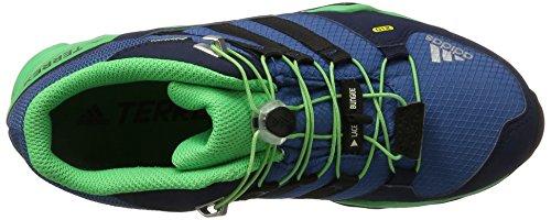Para Adidas verene Unisex Zapatillas Mid Senderismo De azul negbas Azul Terrex K Gtx Niños azubas H8Hqr