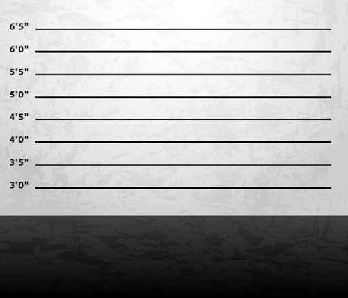 Raw Material Wall Decals Mugshot Prison Background 30