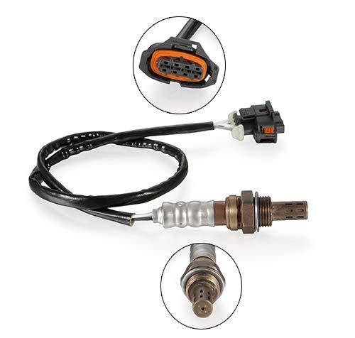 Dromedary Oxygen Sensor For 55566650 125BHP Dromedary Autoparts