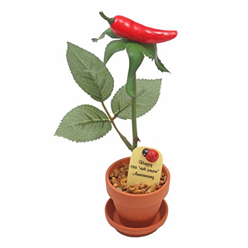 19th Wedding Anniversary Gift Potted Chili Pepper Rose