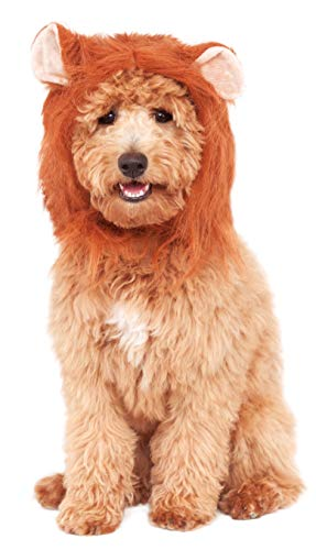 Rubie's Lion's Mane Costume Accessory for Pets, Medium/Large, Multicolor -