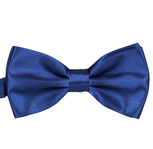 Noeud Papillon bleu royal Unis pour mariage, travail ou tout autre événement