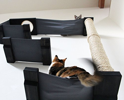 Catastrophicreations sky track hammock climbing activity handcrafted wall mounted cat tree - Wall mounted cat climber ...