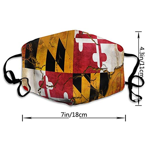 AllCOVER Vintage Wooden Maryland Flag Anti Dust Face Mouth Cover Mask Respirator - Dustproof Anti-Washable - Reusable Masks Respirator Windproof Mask