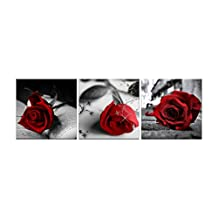 NAN Wind Canvas Print 3 Pcs Black and White Red Rose Canvas Art Abstract Wall Art Decorations Flower Picture on Canvas Home Decor Stretched And Framed 12X12inches
