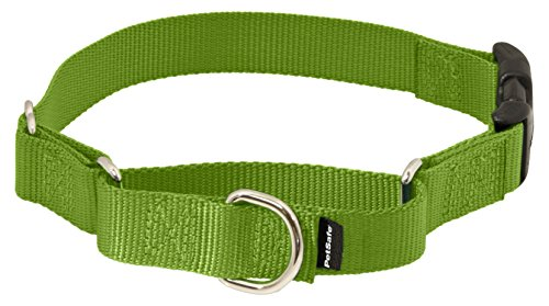 "PetSafe Medium Martingale Collar Quick Snap Buckle, 3/4"", Ap"