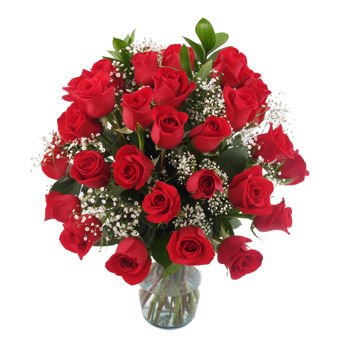 Gorgeous Three Dozen Rose Bouquet for Delivery-with Vase 36 Red Roses for a Special Ocassion by Vistaflor Fresh Flowers