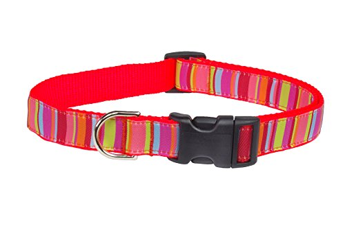 Picture of Sassy Dog Wear S013-CS Lime/Coral Stripe Dog Collar, Small
