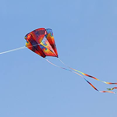 Huilier New Rainbow Parafoil Kite with Tails Soft Kite Flying Toys Give 30m Kite Line: Arts, Crafts & Sewing