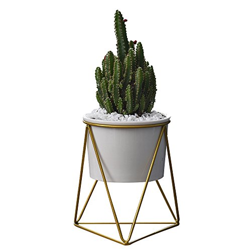 Planter Pots Indoor,6 inch Modern Plants and Planters Garden White Ceramic Round Bowl with Metal Stand for Succulent Planter Cactus (White + (Ceramic Garden Urns)