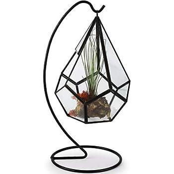 Amazon.com: Circleware 32501 Terraria - Terrario con soporte ...