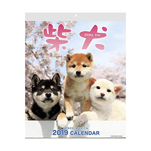 Shiba Inu Calendar 2019 with Adorable Shiba Dogs' Pictures | US Holidays & Japanese Holidays | in English | Made in Japan (Wall Calendar 2019) ()