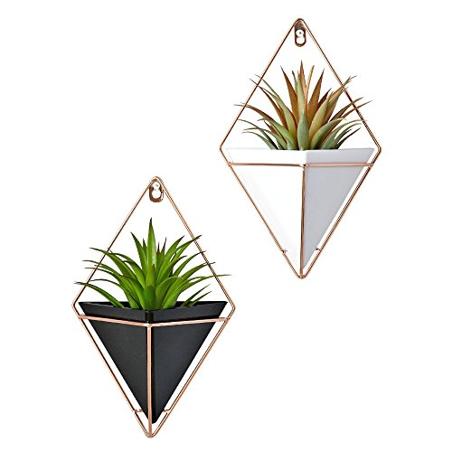 Hanging Wall Brass (2 Pack Modern Decorative Geometric Wall Decor Containers Hanging Planter Vases for Succulent Plants/Air Plant/Faux Plant/Mini Cactus Plant/Artificial Plants and More (black and white))