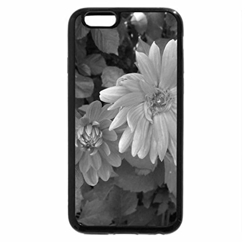iPhone 6S Plus Case, iPhone 6 Plus Case (Black & White) - A perfect day at Edmonton garden 08