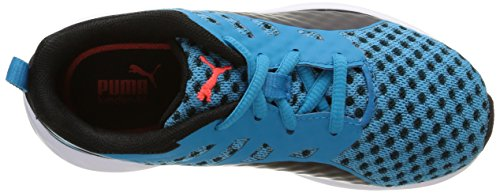 Puma Flare Junior, Zapatillas de Running, Unisex Niños Azul (Atomic Blue/Black/Black)