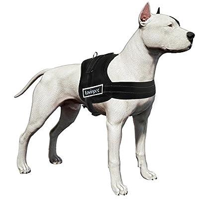 LovinPet Comfort & Control Dog Harness; No Pull & No Choke Design, Luxurious Padded Vest, Eco-Friendly For Boxer, Bulldog, Pitbull, Australian Shepherd (Medium & Large Breed etc.)