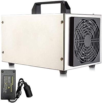 HYL Generador de Ozono Coche 12V Generador de ozono 10.000 mg/h ...