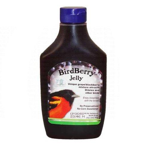 Songbird Essentials BirdBerry Jelly Garden, Lawn, Supply, Maintenance