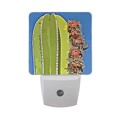 LED Lamp Night Light, Plug in Night Light Great for Bedroom Bathroom Hallway Stairways Or Any Dark Room,Cartoon Saguaro Cactus Light with Smart Dusk to Dawn ()