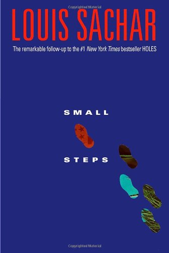 Book cover for Small Steps