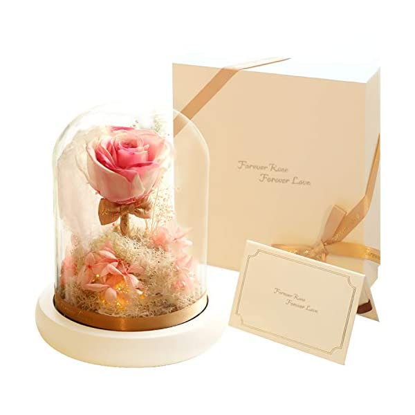 Preserved roses – new forever eternity preserve real rose with led in glass – with gift box, gift bag, gift card – beauty and the beast flower for anniversary valentines day mother's day birthday gift