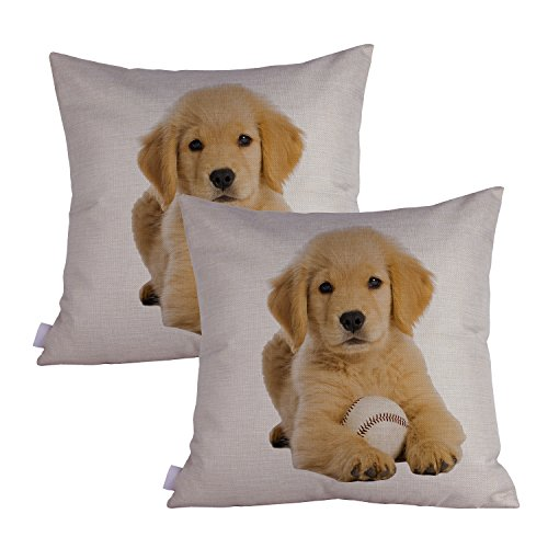 Queenie - 2 Pcs Dog Breed Series II Decorative Pillowcase Cushion Cover for Sofa Throw Pillow Case 18 X 18 Inch 45 X 45 Cm, Set of 2 (Golden Retriever Puppy) ()