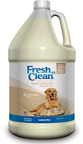 LAMBERT KAY/PBI GORDON Fresh 'n Clean Oatmeal 'n Baking Soda Shampoo Oatmeal 1 GAL (Lambert Kay Oatmeal)
