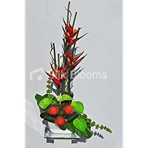 Tropical Red Heliconia and Green Anthurium Vase Display with Protea Pincushion 52