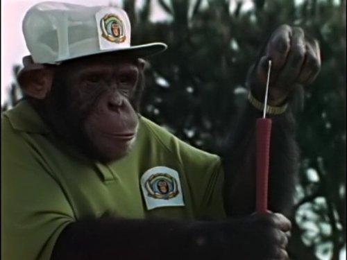 lancelot-link-secret-chimp-the-dreaded-hong-kong-sneeze-the-great-bank-robbery