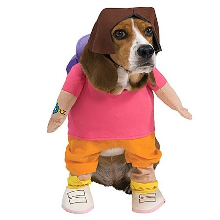 Image result for dora dog costume