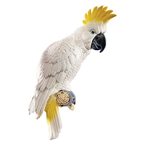 - Design Toscano Citron Cockatoo Bird Tropical Decor Wall Sculpture, 14 Inch, Polyresin, Full Color