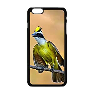The Colorful Bird Can Sing Hight Quality Plastic Case for Iphone 6plus
