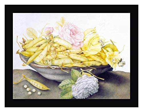 Bowl with Peas by Giovanna Garzoni - 30