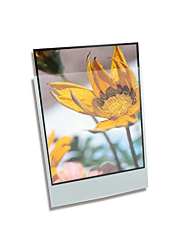 Clear File - Archival Photo Print Protectors - 8.5'' X 11'' - 100 Pack - 040100B by Clear File (Image #1)