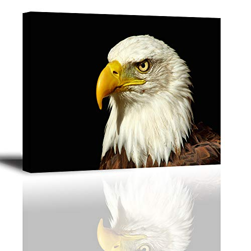 Tku's Bald Eagle Canvas Painting with Black Background, used for sale  Delivered anywhere in USA