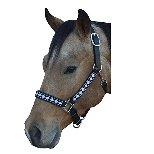 Leather Crown Safety Halter (Intrepid International Leather Crown Diamond with Padded Nose Halter, Black/Neon Green, Cob)