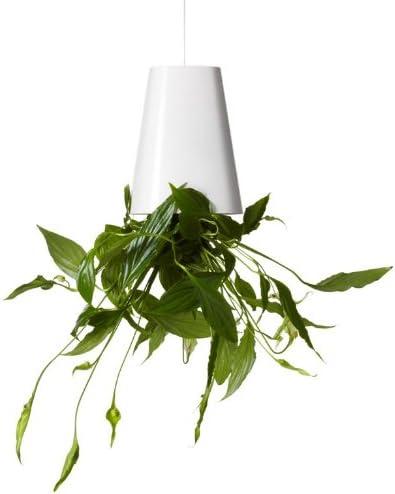 Boskke Sky Planter Blumentopf, klein, cremeweiß