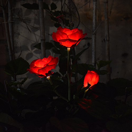 Chasgo Outdoor Solar Garden Light, Decorative LED Solar Stake Light, Solar Powered Rose Flower Light for Garden Yard Art, Red Solar Rose For Sale