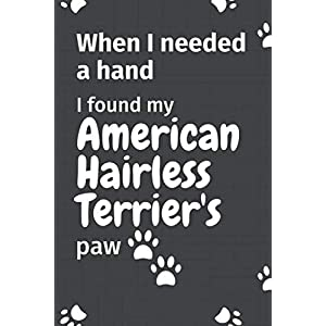 When I needed a hand, I found my American Hairless Terrier's paw: For American Hairless Terrier Puppy Fans 21