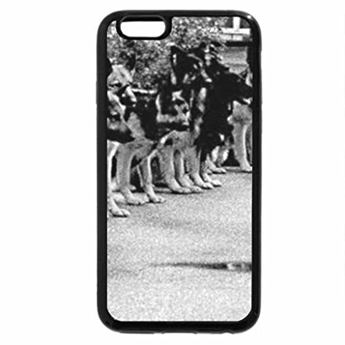 iPhone 6S Case, iPhone 6 Case (Black & White) - cat walking by
