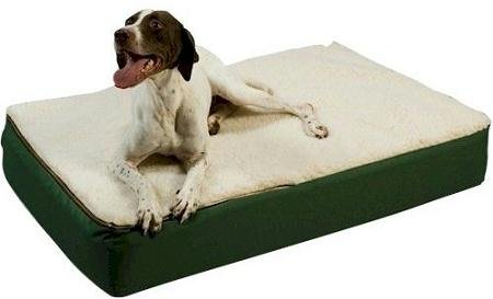 Snoozer Medium Super Orthopedic Senior Dog Bed, Black with Cream Sherpa, My Pet Supplies
